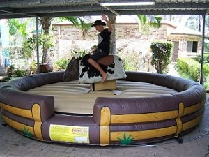 Bucking Bull hire Brisbane
