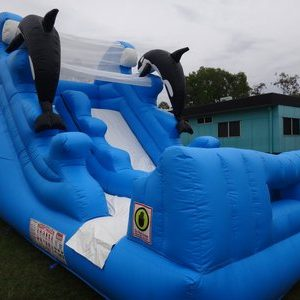 Dolphin / Orcha Water Slide
