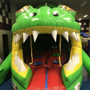 Giant Inflatable Lizard Obstacle Course